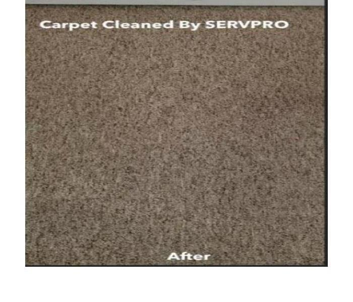 Carpet Cleaning After Storm Damage After
