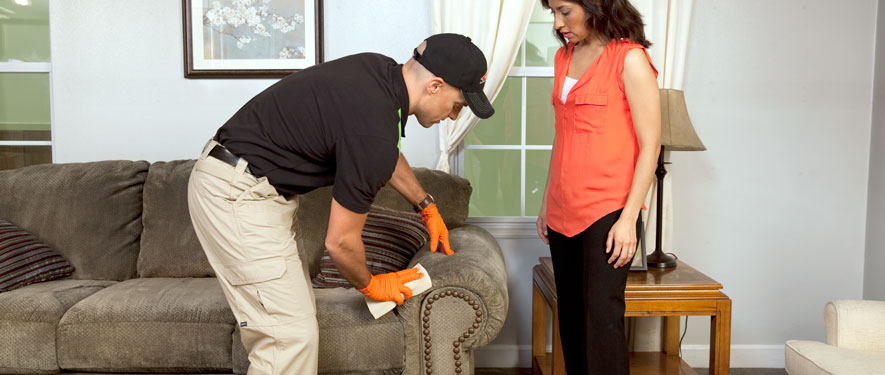 Thibodaux, LA carpet upholstery cleaning