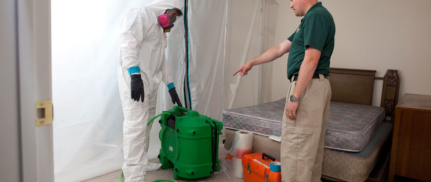 New Orleans, LA mold removal process